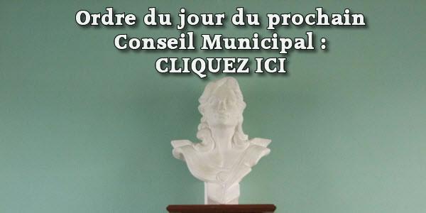 Ordre du jour du Conseil municipal du 19 janvier 2021